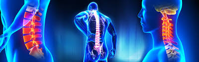 Why does Chiropractic work?